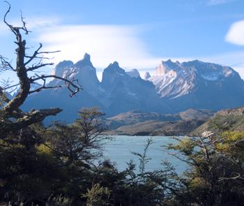 Patagonia Ima03 350x295